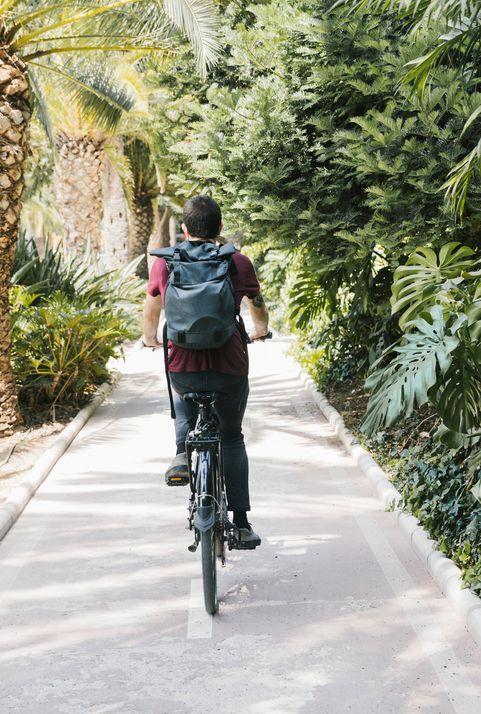 生態交通及生態物流